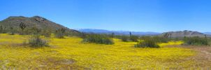 Saddleback Butte Panorama 2 by kookybat810