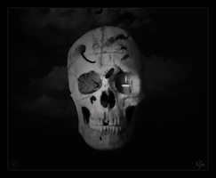 Skull by Gee-X