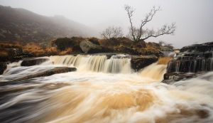 River Tavy by JakeSpain