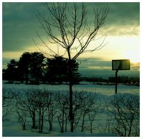 the last shot of winter by Skelig