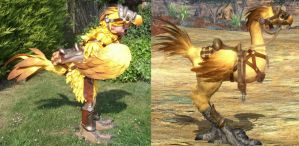 Final Fantasy XIV Chocobo Cosplay by calleymacleod
