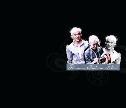 Tom Felton wallpaper 2 by asweettouch