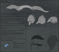 Reepuls Species Reference. 2012 by Kdaea