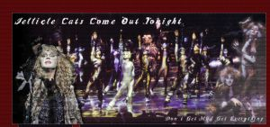 Jellicle Cats come out tonight by bcboo