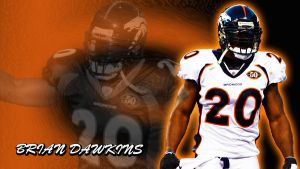 Brian Dawkins by jason284