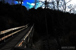 Into the Woods by MasonStarnes