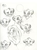 Simba Expressions by Beckylynne