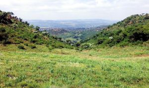 How green is my valley by SiradLah