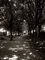 Walk to Your Grave by xLivingDeadGirl