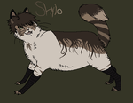 Shylo the Kat by Super-Chey