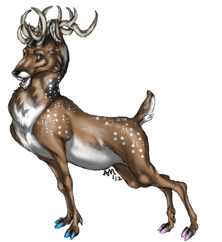 Deery by StoryTrail