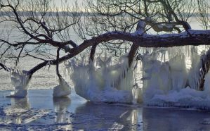 Mother Nature's Ice Sculptures by lenslady