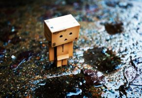 Rainy day for Danbo by LadySleepsAlot