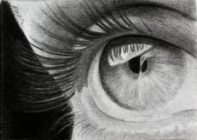 Eye ACEO by skippypoof