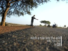 Hitch a ride into the Wild by quarterbacker