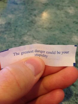 My fortune, or a thinly veiled insult? by dovahkay