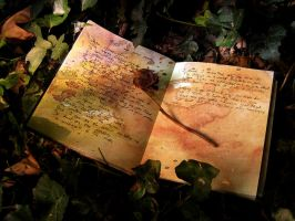 Profit In Your Poetry by woodfaery