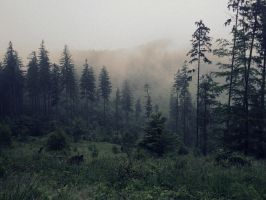 In the mist by the hills... by Topielica666
