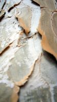 Crackling bark by deadpixeldesigns