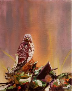 Falcon by WendyMitchell
