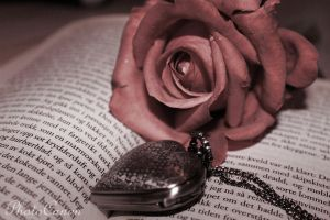 Read The Rose by PhotoCanon