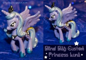 Custom Princess Luna by rayechu
