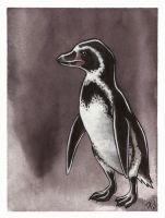 Loneguin by dcwilson