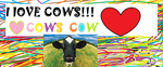 cows by cornwall123321
