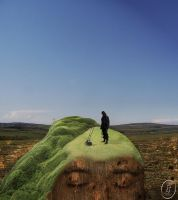 Mowing a giant by inner-outsider