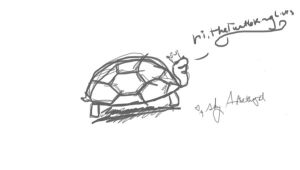 turtle sketch commission by sky-amethyst