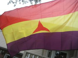 My New International Brigades Flag. by RedAmerican1945