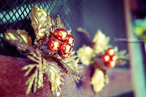 Christmas is so near... by glamofficial
