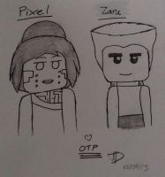 Zane and Pixel by artgamerforever