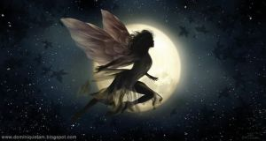 Night Fairy by dominiquefam