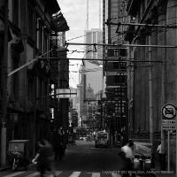 The Bund - All that ture Shanghai XIV by longbow