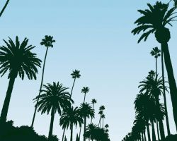 L.A. Palm's by Polacy