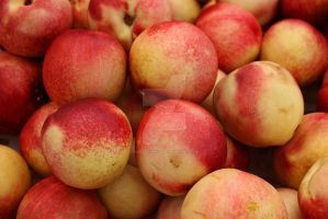Nectarines by BabyGryphon