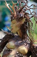 Castlefest 2014 12 by pagan-live-style