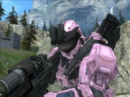 Pink Sniper by Rodef-Shalom