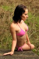 Cheetah - pink bikini on block 1 by wildplaces