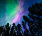 Pink Northern Lights by Nitrok