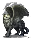 Mountain Gryphon by CharReed