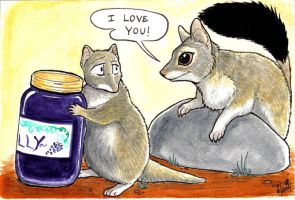 I love you, Jelly Dunnart by twapa