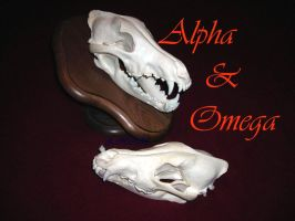 Alpha And Omega - Wolf Skulls by Zhon