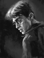 harryPotter by NightshadeBerry