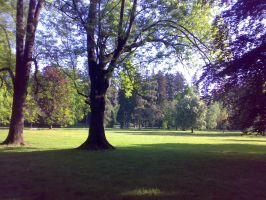 Maribor park by metak