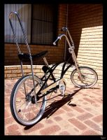 lowrider bike by wieman