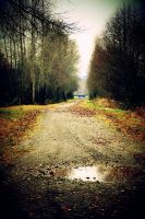 Orting Trail by Fair-Uh-Grrr