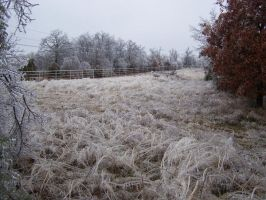 Ice Storm10 by effing-stock
