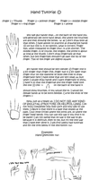 Hands Tutorial by BlazingBacon